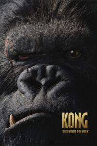 PP30462- POSTER KONG THE 8TH WONDER OF THE WORLD