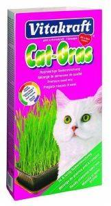 ΓΡΑΣΙΔΙ VITAKRAFT CAT GRASS 120GR