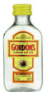 GIN GORDON'S (PET) 50 ML